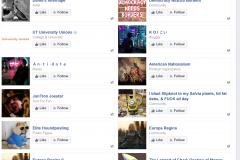 Stolz FB Likes
